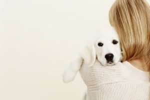 October, National Animal Safety & Protection Month