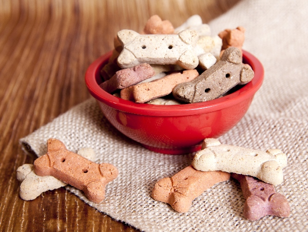 Treats, Dog It Yourself: 5 DIY Summer Treats for Dogs